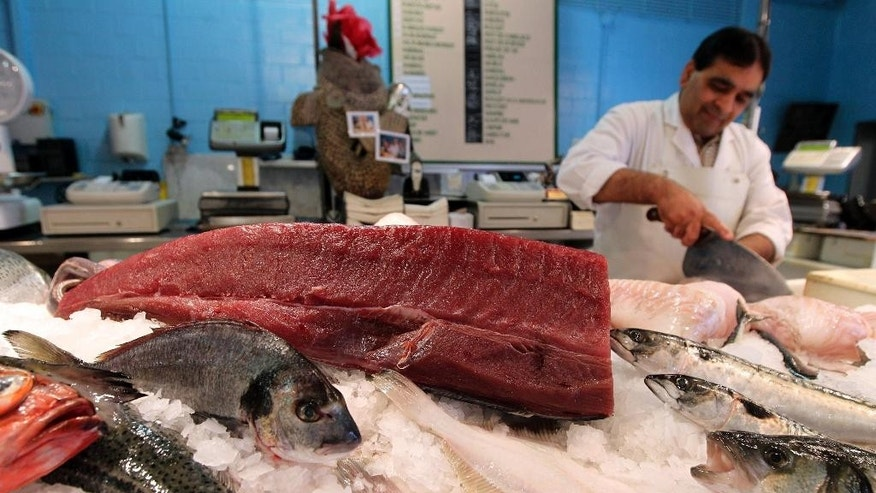 FILE - In this June 12, 2012 file photo, a piece of yellowfin tuna, top, is displayed at a fish shop in Ghent, Belgium.  Two studies from environmental groups, obtained Wednesday, March 25, 2015 by The Associated Press ahead of their release, show EU nations continue to overfish their Atlantic waters despite commitments to fish sustainably and stay within safe scientific limits. (AP Photo/Yves Logghe, File)