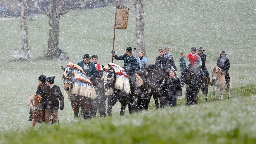 Local residents dressed in traditional Bavarian clothes of the region  ride  through heavy snowfall to get blessing for men and beast at the traditional Georgi (St. George)  horse riding procession on Easter Monday in Traunstein, southern Germany, Monday, April 6, 2015. (AP Photo/Matthias Schrader)