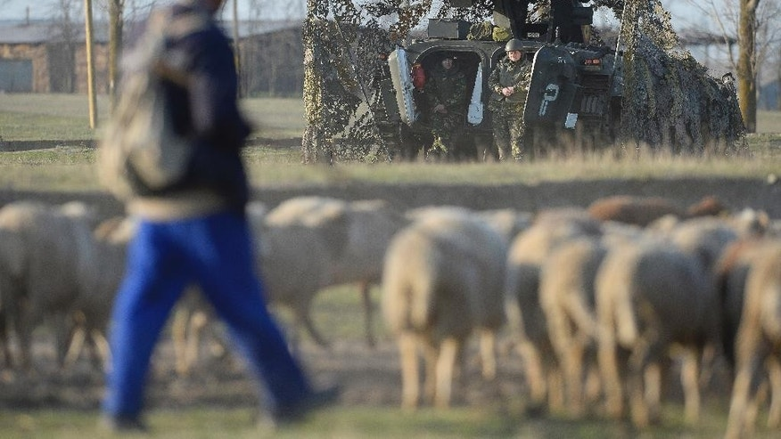 """Romanian soldiers manning a MLI-84M armored personnel carrier look at a sheepherder as he guides his flock on the outskirts of Smardan shooting range, near Galati, Romania, Wednesday, April 15, 2015. Some 2,200 Romanian, U.S., British and Moldovan troops will take part in """"Wind Spring 15"""" military exercises at a shooting range and an airbase near the Black Sea close to the border with Moldova and Ukraine, Romanian Defense Minister Mircea Dusa confirmed Wednesday.  (AP Photo/Octav Ganea, Mediafax) ROMANIA OUT"""