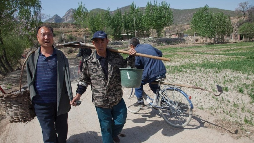 In this April 23, 2015 photo, friends Jia Wenqi, left, and Jia Haixia, right, walk along a lane in Yeli village near Shijiazhuang city in northern China's Hebei province. For the past 13 years, Jia Wenqi, who has no arms, and Jia Haixia, who is blind, have worked together to plant and water more than 12,000 trees near their village. (AP Photo/Helene Franchineau)