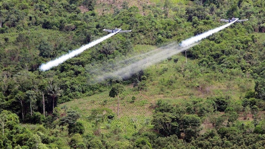 FILE - In this Dec. 11, 2006, file photo, two AT- 802 planes are seen fumigating coca fields in San Miguel, Colombia. Cultivation of the leaf used to make cocaine skyrocketed in 2014 in Colombia, according to a new White House report released partially on Monday, May 4, 2015, that's likely to pressure the government to preserve a threatened U.S. aerial eradication program that's been at the heart of the drug war for over a decade. (AP Photo/Fernando Vergara, File)