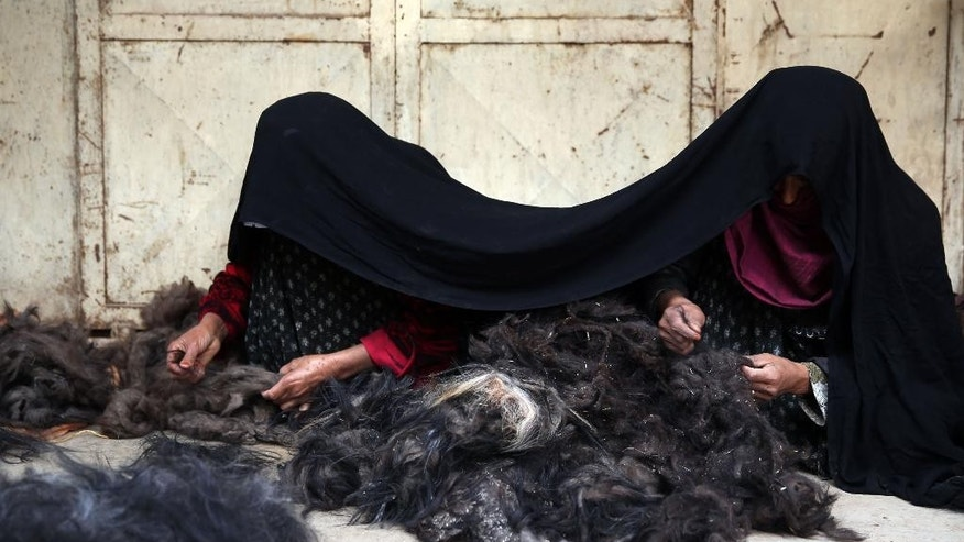 In this Wednesday, April 15, 2015 photo,  Afghan female laborers work at a traditional cashmere factory in Herat city, west of the capital Kabul, Afghanistan. Not so long ago, Afghan farmers collected the thick winter undercoat their goats shed every spring and threw it on the fire to heat their homes and cook their food. Some have since learned that the super-soft fluff that comes off in clumps as the weather warms up, once cleaned, refined and spun into yarn is cashmere - a luxury product that finds customers as far away as the United States, Britain and Europe. (AP Photo/Massoud Hossaini)