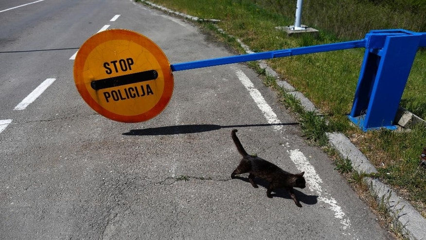 A cat passes by the stop sign at the Bezdan border crossing into the Croatia, near Bezdan, Serbia, Thursday, April 30, 2015. The inauguration of world's new mini-state in the war-torn Balkans may sound as an elaborate joke by international organizers, but Croats and Serbs aren't laughing. The so-called Free Republic of Liberland, a 7-square-kilometer swampy patch of isolated land on the banks of the Danube river border between Serbia and Croatia _ which fought a war in the 1990s _ has been blocked by police in both states. (AP Photo/Darko Vojinovic)