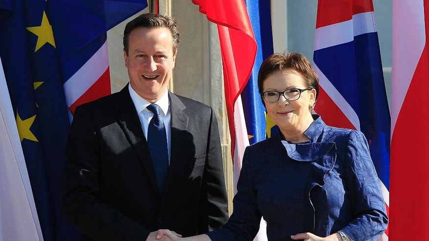 Polish Prime Minister Ewa Kopacz welcomes British Prime Minster David Cameron, left, for talks in the Palace on the Island in the royal Lazienki Park in Warsaw, Poland, Friday May 29, 2015.(AP Photo/Czarek Sokolowski)