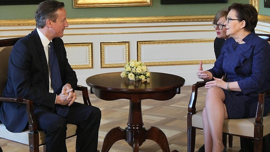 Polish Prime Minister Ewa Kopacz and British Prime Minster David Cameron, left, talks in the Palace on the Island in the royal Lazienki Park in Warsaw, Poland, Friday May 29, 2015. (AP Photo/Czarek Sokolowski)