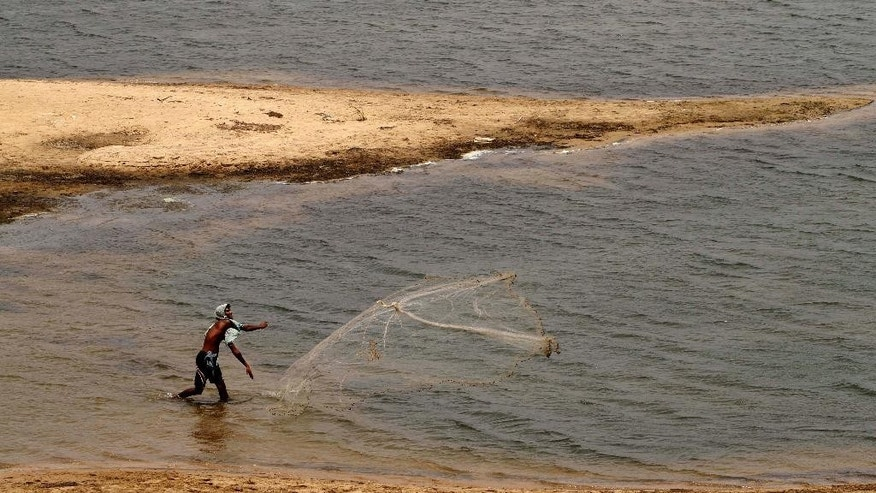 An Indian villager throws his fishing net in the Daya River to catch fish on a hot summer day on the outskirts of the eastern Indian city of Bhubaneswar, India, Friday, May 29, 2015. Dizzying temperatures caused water shortages in thousands of Indian villages and killed hundreds more people over the past day, driving the death toll from a weeks long heat wave to more than 1,000, officials said Friday. (AP Photo/Biswaranjan Rout)