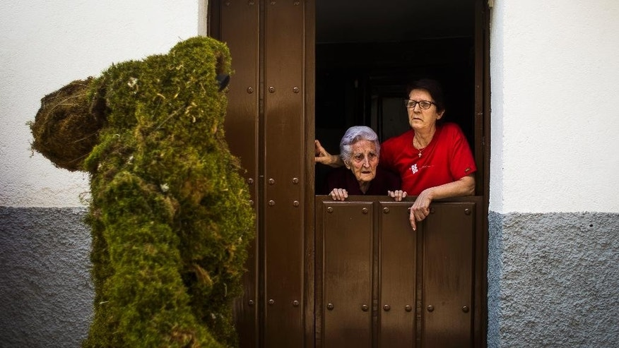 A moss woman marches as women watch from their window during the Corpus Christi procession in the small village of Bejar, Spain, Sunday, June 7, 2015. Men covered from head to toe in moss have paraded through the streets of Bejar in western Spain to commemorate a daring raid that local legend says helped liberate their town from Muslim occupation some eight centuries ago. Locals believe that during the reign of King Alfonso VIII of Castile (1155-1214) men camouflaged themselves in moss from local forests to enable them to approach the gates of a Muslim fortress.  (AP Photo/Andres Kudacki)