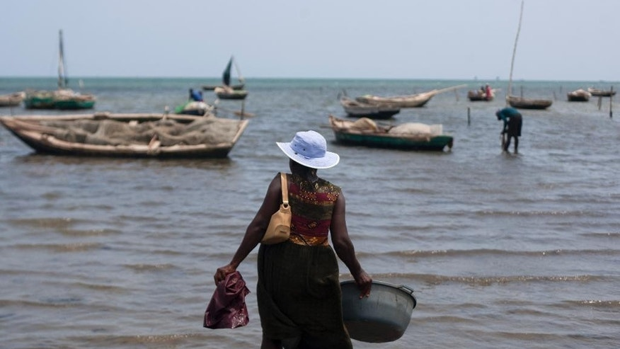 In this May 14, 2015 photo, fishermen clean fish in the waters of Caracol Bay before selling to fish vendors near Cap Haitien, Haiti. Over the decades, impoverished Haiti has gained a reputation as an environmental wasteland. The country has only about 2 to 3 percent of its original forest cover, most of it lost because trees were cut down to make charcoal for cooking fuel. Its waters are severely overfished, leaving only small, young fish to catch. (AP Photo/Dieu Nalio Chery)