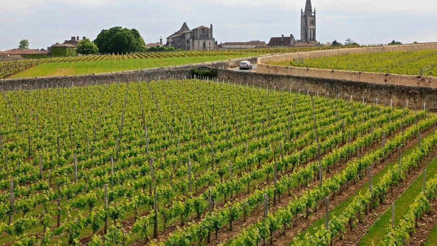 FILE - This May 3, 2010 file photo shows the Vineyards of Chateau Canon, with the medieval commune and monolithic church of St. Emilion in the background, in France. France wants to boost tourism by developing wine and gastronomy tours in its countryside as part of a series of measures that aim at keeping the country's position as the top destination in the world. French foreign affairs minister Laurent Fabius set Thursday a target of 100 million foreign tourists per year by 2020 _from 84 million now. (AP Photo/Eric Risberg, File)