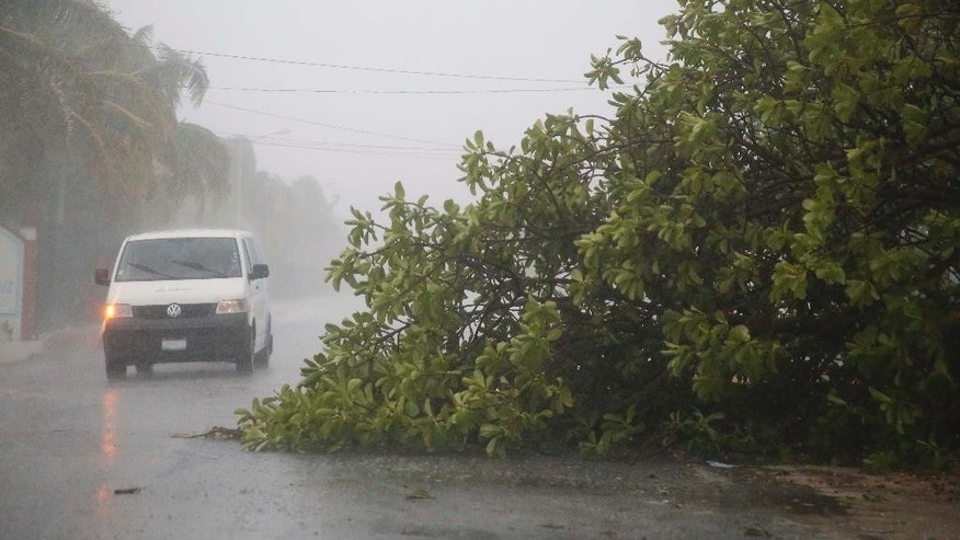 A van drives next to a tree that was toppled by high winds in Puerto Juarez, Cancun, Mexico, Sunday, June 14, 2015. As tropical storm Carlos batters the Pacific coast of Mexico, tropical weather is raising havoc along the Caribbean coast in Cancun. (AP Photo/Israel Leal)