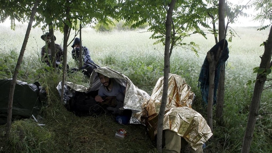 FILE - In this Thursday, June 4, 2015, file photo, migrants from Syria shelter from rain in a thicket near a railway northeast of Skopje, Macedonia. Syria overtook Afghanistan to become the world's biggest source of refugees last year, while the number of people forced from their homes by conflicts worldwide rose to a record 59.5 million, the United Nations' refugee agency said Thursday, June 18, 2015. (AP Photo/Boris Grdanoski, File)