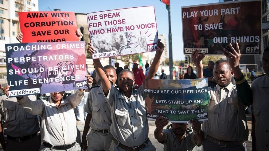 In this photo taken Monday, June 15, 2015, demonstrators protest outside the African Union Summit, held in Johannesburg, calling for the protection of rhinos by Africa countries. Rhino breeders and game reserve owners took the South African government to court this week to try to overturn its ban on the domestic trade of rhino horn. (AP Photo/Shiraaz Mohamed)