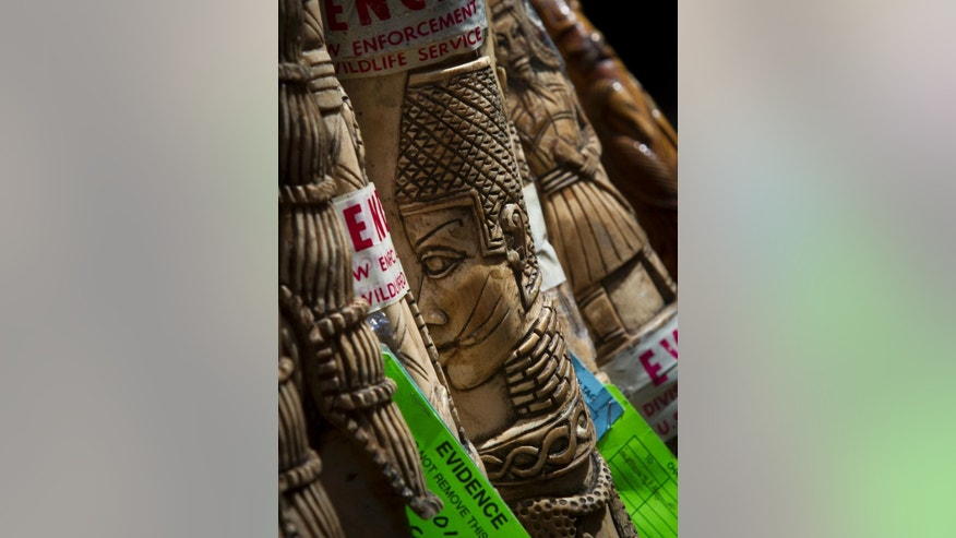The U.S. government display confiscated illegal ivory before crushing more than a ton in an effort to halt elephant poaching and ivory trafficking, Friday, June 19, 2015, at Times Square in New York. (AP Photo/Bebeto Matthews)