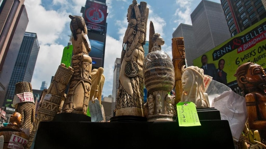 U.S. government display confiscated illegal ivory before crushing more than a ton in an effort to halt elephant poaching and ivory trafficking, Friday, June 19, 2015 at  Times Square in New York. (AP Photo/Bebeto Matthews)