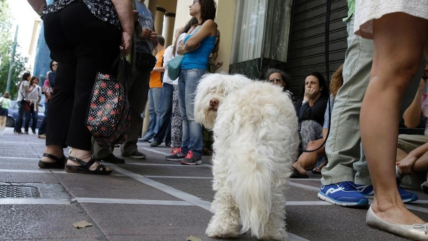 A dog stands with people in a queue outside a bank which operates on Saturday but eventually didn't open, in central Athens, on June 27, 2015. Greece's fraught bailout talks with its creditors took a dramatic turn early Saturday, with the radical left government announcing a referendum in just over a week on the latest proposed deal - and urging voters to reject it. (AP Photo/Thanassis Stavrakis)