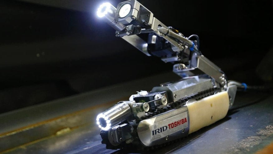 "A robot developed by Toshiba Corp. is demonstrated at its laboratory in Yokohama, near Tokyo, Tuesday, June 30, 2015. As Japan struggles in the early stages of decades-long cleanup of the Fukushima nuclear crisis, Toshiba has developed the robot that raises its tail like a scorpion and collects data, and hopefully locate some of melted debris. The ""scorpion"" robot, which is 54 centimeters (21 inches) long when extended, has two cameras, LED lighting and a dosimeter, will be sent into the Unit 2 reactor in August to look. (AP Photo/Shizuo Kambayashi)"
