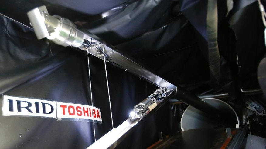 "A robot developed by Toshiba Corp. is demonstrated its laboratory in Kawasaki, near Tokyo, Tuesday, June 30, 2015. As Japan struggles in the early stages of decades-long cleanup of the Fukushima nuclear crisis, Toshiba has developed the robot that raises its tail like a scorpion and collects data, and hopefully locate some of melted debris. The ""scorpion"" robot, which is 54 centimeters (21 inches) long when extended, has two cameras, LED lighting and a dosimeter, will be sent into the Unit 2 reactor in August to look. (AP Photo/Shizuo Kambayashi)"