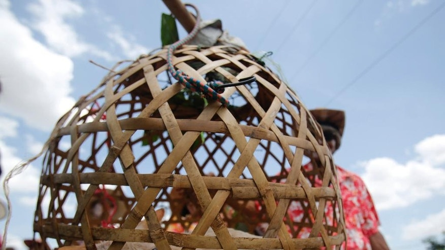 """In this July 2, 2015 photo, Thai villagers parade throughout their village with a caged cat as part of ceremonies praying for rain in Nakhon Ratchasima, Thailand. Under the scorching sun, dozens of Thai villagers, dressed in flowery shirts and traditional costumes, paraded the white cat caged in a bamboo-woven basket door-to-door and let neighbors splash water on the feline, while chanting an ancient tune: """"Rain, rain, come pouring down. We barely had any this year. Without rain, our rice will die."""" (AP Photo/Sakchai Lalit)"""