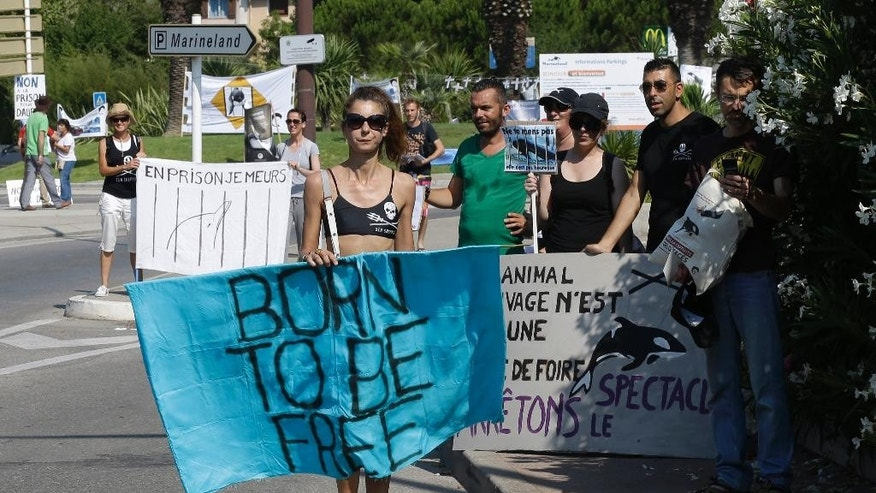 "People demonstrate at the entrance? of the Marineland animal exhibition park in Antibes, southeastern France, to protest against the detention of dolphins, Sunday, July 12, 2015. Many associations demonstrate this Sunday in Antibes to ""require the prohibition of captive cetaceans"" and ""closure of all dolphinariums in Europe"".? (AP Photo/Lionel Cironneau)"