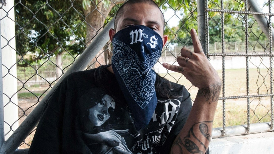 "A Mara Salvatrucha gang member attends a press conference where leaders of the Mara Salvatrucha (MS-13) and Barrio 18 declared the city of Quezaltepeque a peace zone or ""Sanctuary City"" for gang related violence, on January 31, 2013 at the Quezaltepeque prison, 25 kms west of San Salvador. Gang leaders and members have been involved in a gang truce to reduce crime in El Salvador.     AFP PHOTO/ Juan CARLOS        (Photo credit should read Juan CARLOS/AFP/Getty Images)"