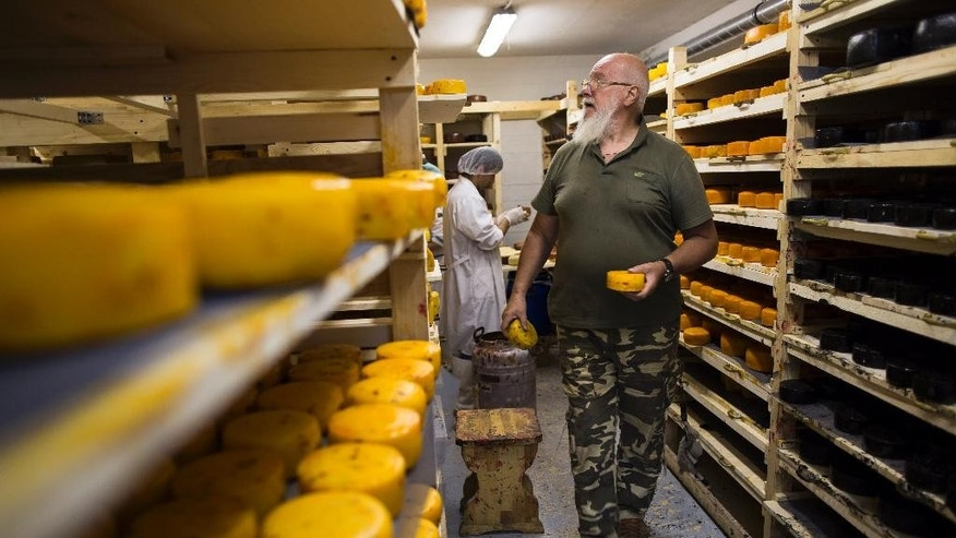 In this photo taken on Wednesday, Aug.  5, 2015, John Kopiski, a British-born business executive who came to Moscow for a 3-day business trip and ended up staying for more than 20 years, controls the process of cheese making in a storage at his farm in Krutovo village, Vladimir region, about 220 kilometers (some 140 miles) east of Moscow, Russia. Russia has marked the one-year anniversary of its ban on Western agricultural products with an order to destroy contraband food, a move that has raised controversy amid the nation's economic downturn. Farmers like Kopiski backed the Kremlin ban on Western food, hoping to expand their production to fill the market niche which previously had been occupied by imported food. (AP Photo/Alexander Zemlianichenko)