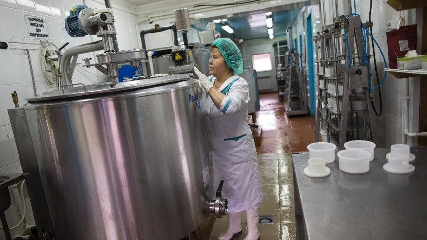 In this photo taken on Wednesday, Aug.  5, 2015, a specialist controls the process of cheese making at John Kopiski's farm in Krutovo village, Vladimir region, about 220 kilometers (some 140 miles) east of Moscow, Russia. Russia has marked the one-year anniversary of its ban on Western agricultural products with an order to destroy contraband food, a move that has raised controversy amid the nation's economic downturn. Farmers like Kopiski backed the Kremlin ban on Western food, hoping to expand their production to fill the market niche which previously had been occupied by imported food. (AP Photo/Alexander Zemlianichenko)
