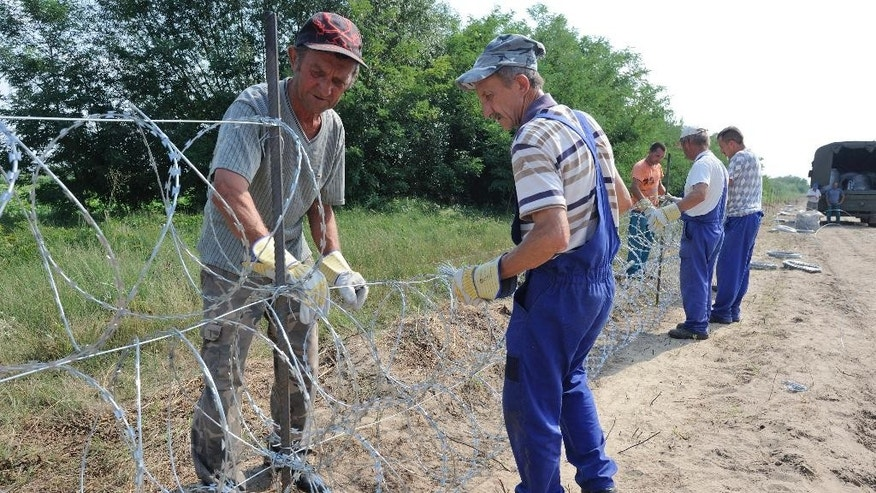 Hungarian workers fix razor wires as they construct a 175 kms long temporary fence on Hungary's southern border with Serbia destined to halt illegal immigration into the country near Morahalom, 179 kms southeast of Budapest, Hungary, Hungary, Wednesday, Aug. 5, 2015. (Zoltan Gergely Kelemen/MTI via AP)