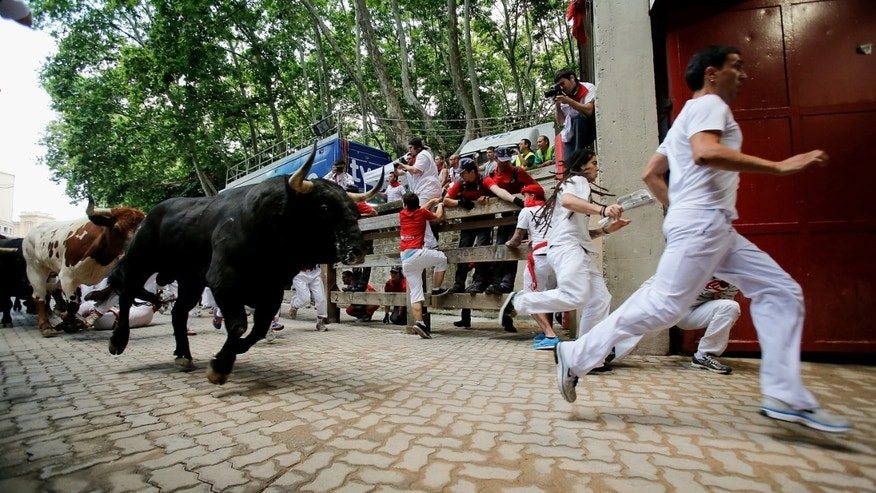 PAMPLONA, SPAIN - JULY 13:  Revellers run with Fuente Ymbro's fighting bulls entering the bullring during the eighth day of the San Fermin Running Of The Bulls festival on July 13, 2013 in Pamplona, Spain. The annual Fiesta de San Fermin, made famous by the 1926 novel of US writer Ernest Hemmingway 'The Sun Also Rises', involves the running of the bulls through the historic heart of Pamplona, this year for nine days from July 6-14.  (Photo by Pablo Blazquez Dominguez/Getty Images)