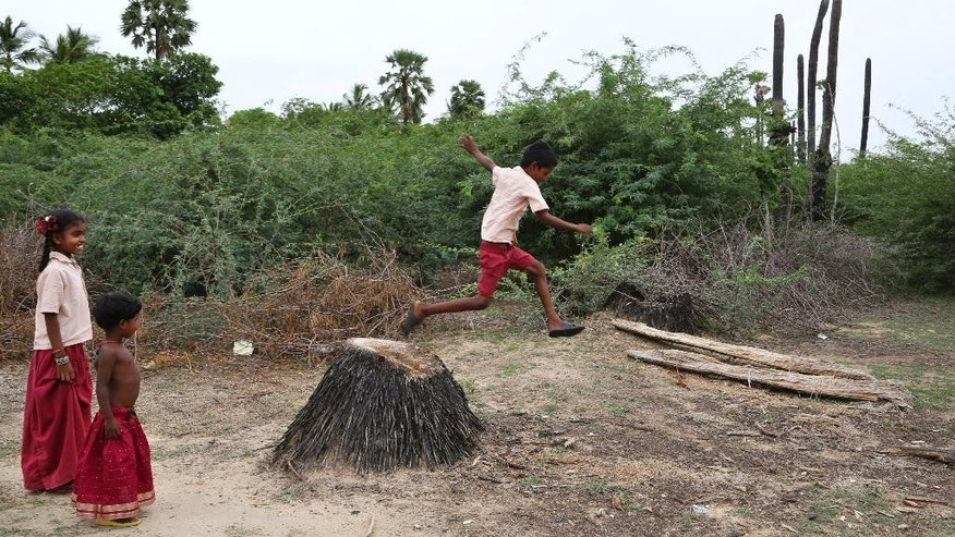 In this June 17, 2015 photo, children play in fields taken over by thorny salt-tolerant bushes called Prosopis juliflora in the village of Sirudalaikkadu, near Vedaranyam, India. On a sun-scorched wasteland near India's southern tip, an unlikely garden filled with spiky shrubs and spindly greens is growing, seemingly against all odds. The plants are living on saltwater, coping with drought and possibly offering viable farming alternatives for a future in which rising seas have inundated countless coastal farmlands. (AP Photo/Aijaz Rahi)