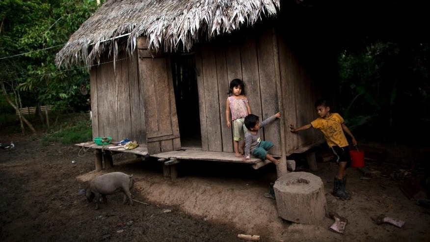 In this July 17, 2015 photo, four-year-old Natalia Diego, left, stands with her brother Jack Diego, 8, right, and two-year-old cousin Roy Duran outside their kitchen before dinner in Nuevo Canaveral, Peru, two days after their family's coca crop was eradicated. Thousands of families similarly stripped of their income source complain that government programs designed to ease the shock of eradication haven't reached them. Critics call it a recipe for social explosion. (AP Photo/Rodrigo Abd)
