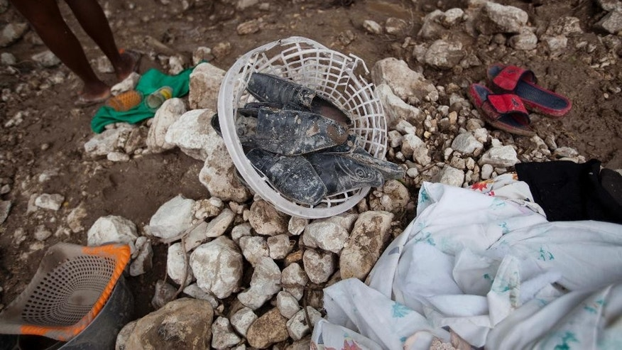 Shoes are collected in a standing fan grill, salvaged from a home damaged by a mudslide triggered by Tropical Storm Erika, in Montrouis, Haiti, Saturday, Aug. 29, 2015.  Erika dissipated early Saturday, but it left devastation in its path on the small eastern Caribbean island of Dominica, and parts of Haiti, authorities said. (AP Photo/Dieu Nalio Chery)