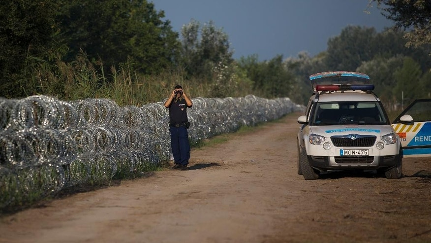 A Hungarian policeman observes terrain at the border with Serbia, looking for refugees crossing the barbed wire fence, in Roszke, Hungary, Monday, Aug. 31, 2015. Migrants fearful of death at sea in overcrowded and flimsy boats have increasingly turned to using a land route to Europe through the Western Balkans. (AP Photo/Darko Bandic)