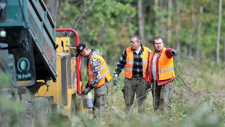 Workers are clearing shrubs and trees from the alleged site of a hidden World War Ii Nazi tunnel that, according to two explorers, might contain an armored train with precious minerals in Walbrzych, Poland, Tuesday, Sept. 15, 2015. The Nazi built a system of tunnels and bunkers in the mountains around Walbrzych and local lore, based on research of explorers says they hid a gold train in one of them in 1945. (AP Photo/Natalia Dobryszycka)