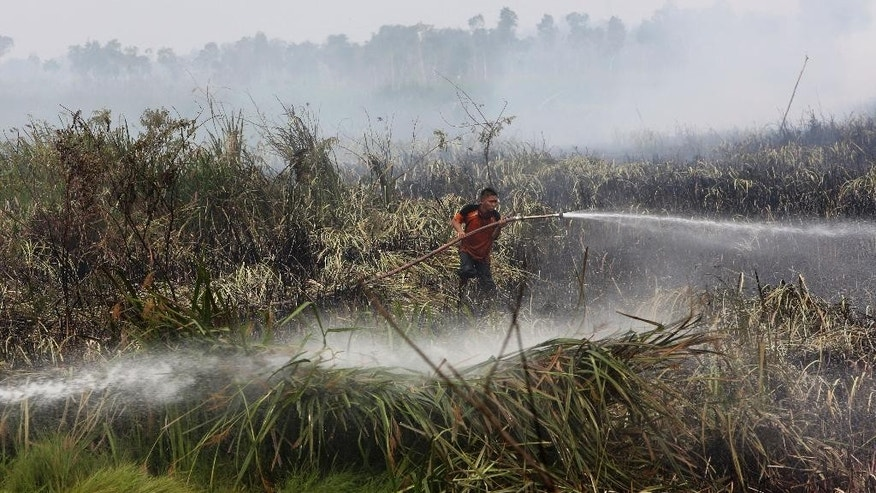 A fireman sprays water to extinguish forest fire in Ogan Ilir, South Sumatra, Indonesia, Thursday, Sept. 17, 2015. Indonesia intensifies efforts to extinguish the forest fires that cause the haze, which blanketed parts of the archipelago and neighboring countries. (AP Photo/Tatan Syuflana)