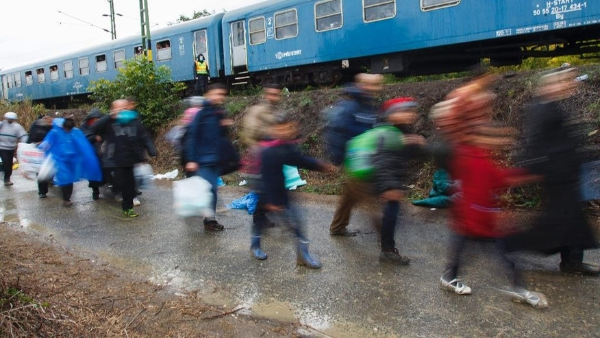 Migrants make their way towards the railway station in Zakany, 230 kms southwest of Budapest, Hungary, after they crossing the Croatian-Hungarian green border, Thursday, Sept. 24, 2015. (Gyorgy Varga/MTI via AP)
