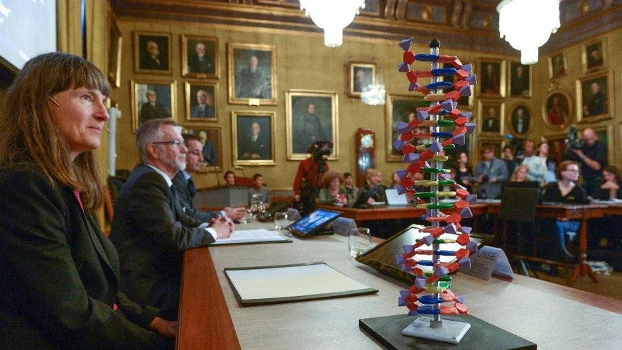 "A model of the DNA helix sits on the desk by professor Sara Snogerup Linse, member of the Nobel Assembly, during a press conference at the Royal Swedish Academy in Stockholm, Wednesday, Oct. 7, 2015. Sweden's Tomas Lindahl, American Paul Modrich and U.S.-Turkish scientist Aziz Sancar won the Nobel Prize in chemistry on Wednesday for ""mechanistic studies of DNA repair."" (Fredrik Sandberg/TT News Agency via AP)  SWEDEN OUT"