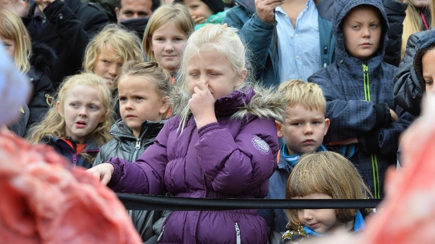 Children reacts to the dissection of a dead male lion in Odense Zoo, Denmark, Thursday, Oct 15, 2015. This year the zoo has killed three of its lions, saying they had failed to find new homes for them despite numerous attempts. (Ole Frederiksen/Polfoto via AP) DENMARK OUT