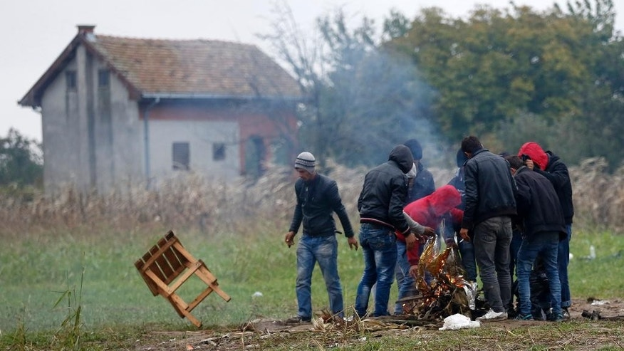 Migrants prepare firewood in the field near a border line between Serbia and Croatia, near the village of Berkasovo, Serbia, Tuesday, Oct. 20, 2015. Thousands of people trying to reach the heart of Europe surged across Serbia's border into Croatia on Monday after authorities eased restrictions that had left them stranded for days in ankle-deep mud and rain. (AP Photo/Darko Vojinovic)