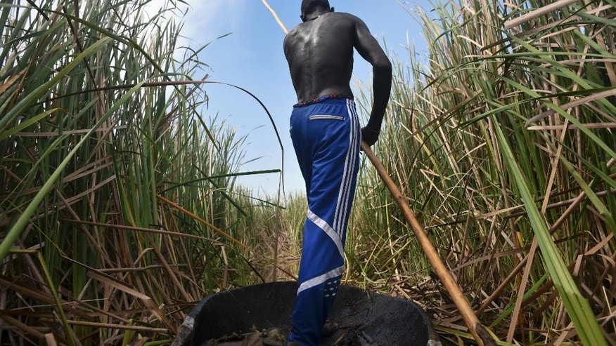 In this photo taken Sunday, Oct. 11, 2015, a man uses a wooden pole to push a canoe carrying a reporter through a swamp, as the man makes the return journey to Kok Island after ferrying displaced families fleeing fighting in that area, in Leer County in Unity State, South Sudan. Kok Island in Unity State has become a place of misery, with hundreds of war-weary people reaching there to seek shelter from the violence, just some of the more than 2 million displaced by South Sudan's civil war, which continues despite a peace accord signed in August. (AP Photo/Jason Patinkin)