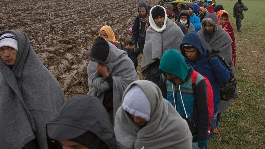 Migrants make their way  through a field after crossing from Croatia, in Rigonce, Slovenia, Sunday, Oct. 25, 2015. Thousands of people are trying to reach central and northern Europe via the Balkans, but often have to wait for days in mud and rain at the Serbian, Croatian and Slovenian borders. (AP Photo/Darko Bandic)