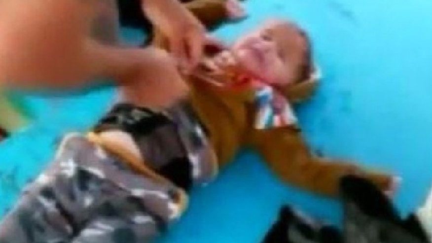 Fishermen pull refugee baby from the Aegean Sea.