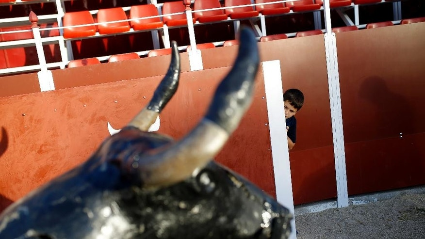 EDS NOTE : SPANISH LAW REQUIRES THAT THE FACES OF MINORS ARE MASKED IN PUBLICATIONS WITHIN SPAIN. In this photo taken on Friday, Oct. 9, 2015, a youth student looks on from behind a wooden fence inside a small bullring during a class in a bullfighting school in Madrid. A majority in the European Union's legislature wants the EU not to spend farm subsidies that could profit the raising of cattle for bullfighting. (AP Photo/Francisco Seco)