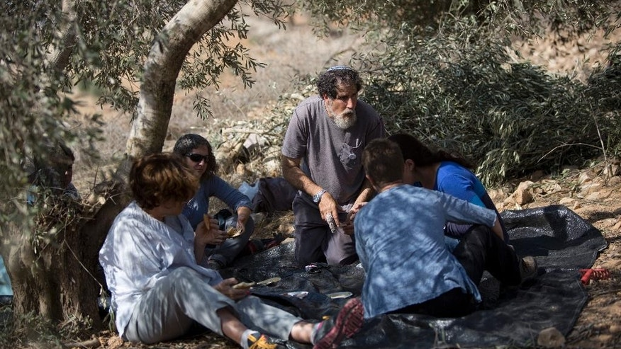 In this Sunday, Nov. 1, 2015 photo, Israeli activist Rabbi Arik Ascherman, center, rests in a Palestinian olive grove during the harvest, in the village of Burin near the West Bank city of Nablus. Ascherman's right middle finger is still bandaged from a recent confrontation in the West Bank, when a suspected extremist Jewish settler lurched at him with a knife, punching and kicking him as he was helping Palestinian farmers harvest their olives. Almost two weeks after the attack, no arrests have been made -- part of what critics say is a culture of impunity for extremist settlers that is also factoring in the nearly two-month wave of violence roiling the region. (AP Photo/Majdi Mohammed)