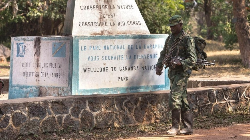 Dec. 29, 2014: An armed elite rapid response team member patrols at the entrance to the Garamba National Park. Congo.