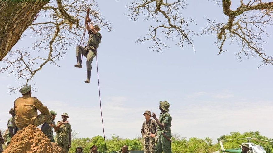 In this photo taken Dec. 29, 2014 and supplied by African Parks, the elite rapid response team members perform rope training to ascend and descend from a helicopter  at the Garamba National Park. Congo. A shootout last month, in which three rangers and a Congolese army colonel were killed, highlighted the challenge of protecting parks in a part of Africa plagued for decades by insurgencies, civil war, refugee flows and weak governments. It shows how some conservation efforts resemble a kind of guerrilla warfare in which rangers and soldiers stalk, and are stalked by, poachers who are slaughtering elephants and other wildlife  (Karen Lubbe/African Parks via AP)