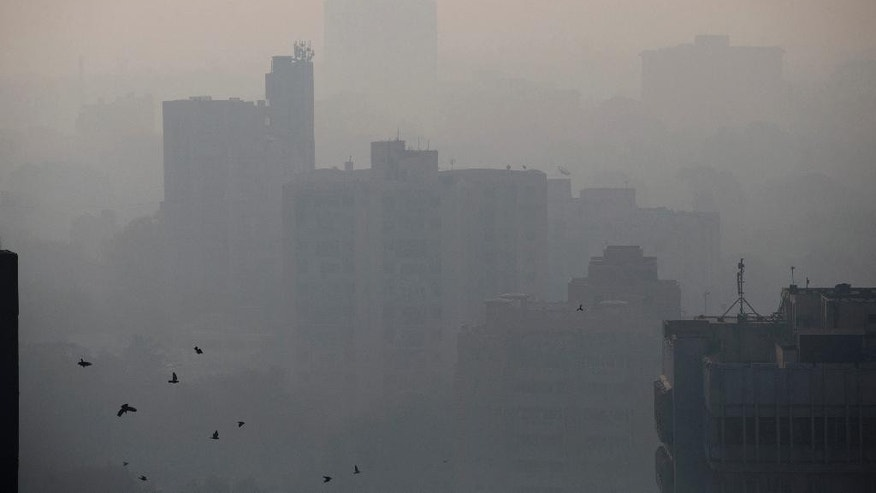 In this Nov. 25, 2015 photo, birds fly in the morning as buildings are covered with smog in New Delhi, India. Over the last decade the city's air pollution has grown so rapidly that the cold weather turns the city into a grey, smog-filled health nightmare. New Delhi has earned the dubious distinction of being the world's dirtiest city, surpassing Beijing, once the poster child for air pollution. (AP Photo /Tsering Topgyal)