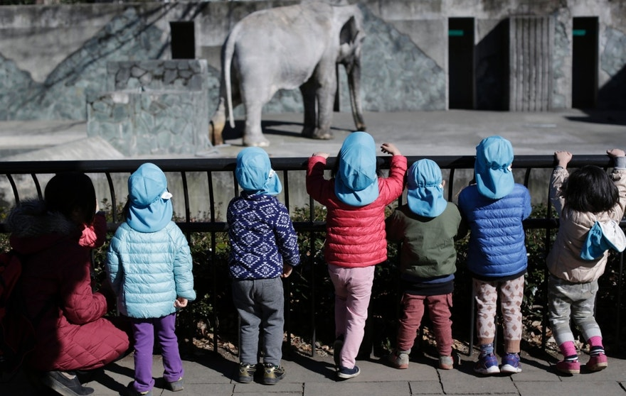 "In this Jan. 27, 2016 photo, children look at Hanako the elephant at Inokashira Park Zoo on the outskirts of Tokyo. An online petition drive wants the 69-year-old Hanako, or ""flower child,"" to be moved to a Thai sanctuary, to live in a natural, grassy habitat where elephants romp in herds, not alone in her concrete pen, with a wading pool she hardly uses and a nearby side building to spend the night. It's attracted tens of thousands of signatures already, with the aim of submitting them to the suburban Tokyo zoo and the Japanese government. (AP Photo/Eugene Hoshiko)"