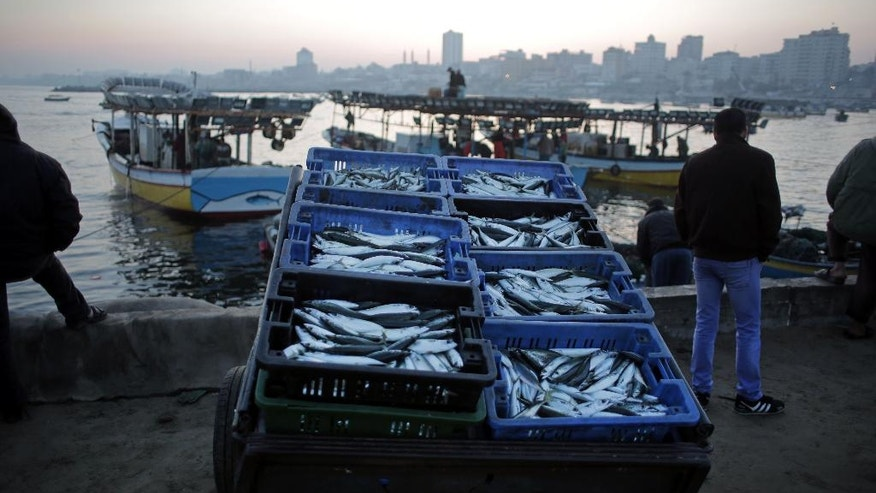 Palestinian fishermen prepare fish for sale after a night long fishing trip, in Gaza seaport , Monday, April 4, 2016. Fishermen in Gaza can now sail farther from the coastal territory after Israel expanded the fishing zone off parts of Gaza by three more nautical miles to nine on Sunday. (AP Photo/ Khalil Hamra)