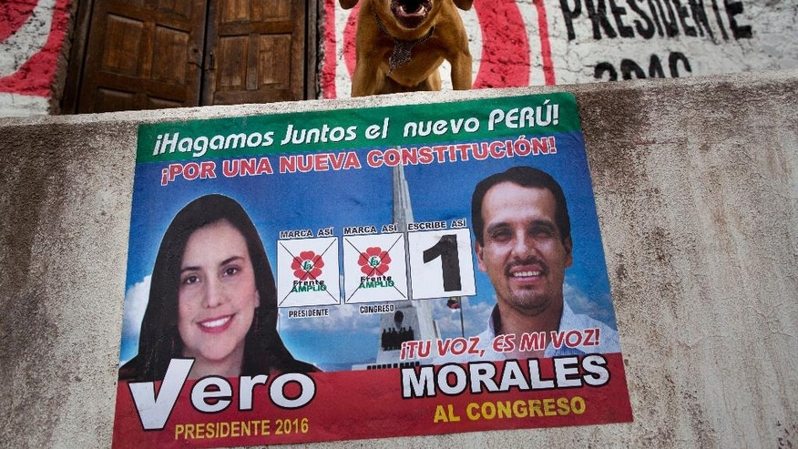 "A dog barks at passersby above a wall with a poster promoting presidential candidate Veronika Mendoza of the ""Frente Amplio"" political party, in Tambo, Peru, Saturday, April 9, 2016. Peruvians head to the ballot box for general elections on Sunday. (AP Photo/Rodrigo Abd)"