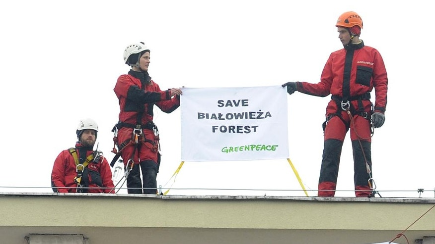 Greenpeace activists hold a banner as they stand on the roof of Poland's Environment Ministry building in Warsaw, Poland, Tuesday, April 12, 2016. The protest comes in reaction to government plans for widespread logging in the Bialowieza forest, Europe's last primeval forest. (AP Photo/Alik Keplicz)